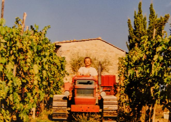 vigna-vendemmia-pruneto-chianti
